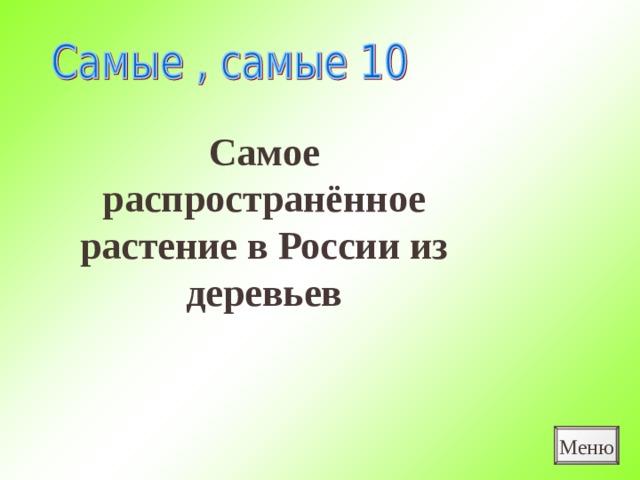 Самое распространённое растение в России из деревьев Меню