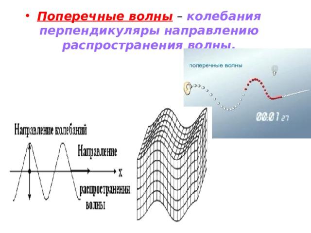 Поперечные волны – колебания перпендикуляры направлению распространения волны.