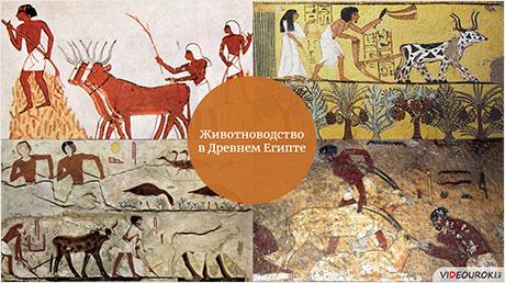 Древнеегипетская цивилизация