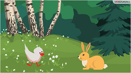 The Ugly Duckling meets a rabbit