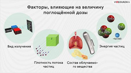 Биологические действия радиоактивных излучений