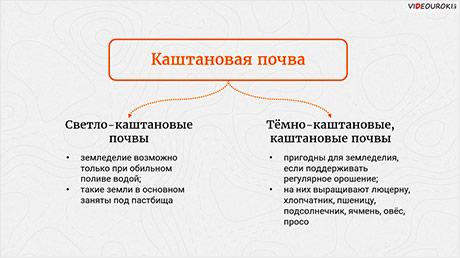 Почвы и почвенные ресурсы, размещение основных типов почв России