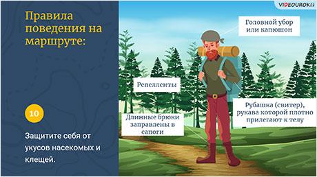 Общие правила поведения во время экскурсий в природу