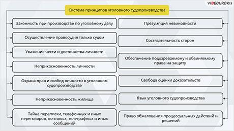 Основные правила и принципы гражданского и уголовного процесса