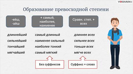 Морфологические нормы. Числительные, прилагательные, местоимения