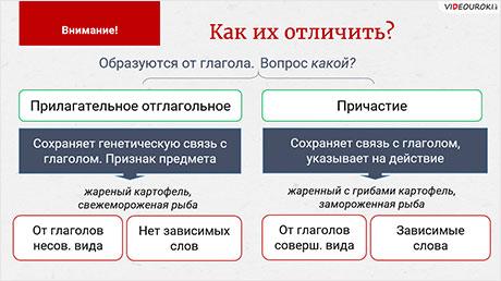Правописание Н и НН в суффиксах разных частей речи