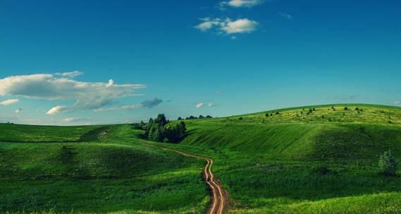 Какую часть от территории россии занимают равнины